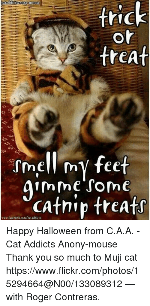 muji: cataddictsanony mousc  trick  or  treat  ssmell my feet  gimme some  www.facebook.com/cat addicts  treats Happy Halloween from C.A.A. - Cat Addicts Anony-mouse  Thank you so much to Muji cat https://www.flickr.com/photos/15294664@N00/133089312 — with Roger Contreras.