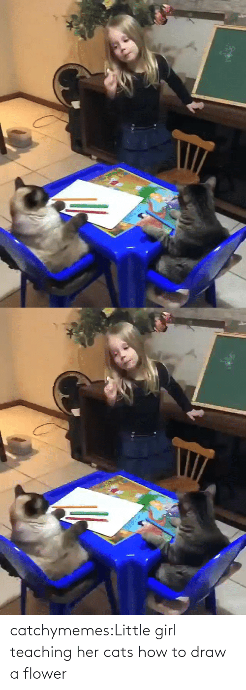 Little: catchymemes:Little girl teaching her cats how to draw a flower