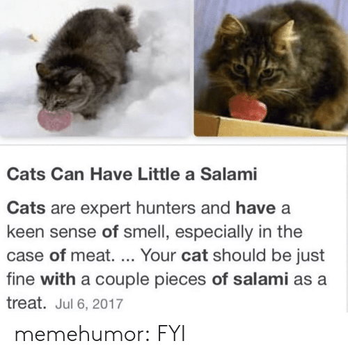 Jul: Cats Can Have Little a Salami  Cats are expert hunters and have a  keen sense of smell, especially in the  case of meat. ... Your cat should be just  fine with a couple pieces of salami as a  treat. Jul 6, 2017 memehumor:  FYI