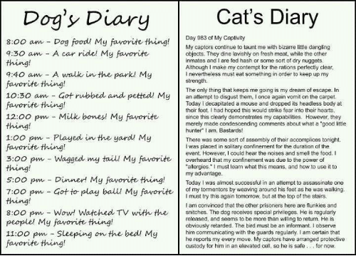 """Contemption: Cat's Diary  Dog's Diary  Day 983 of My Captivity  8:00 am Dog food My favorite thing  My captors continue to taunt me with bizarre little dangling  7:30 am A car ride! My favorite  objects. They dine lavishly on fresh meat, while the other  inmates and I are fed hash or some sort of dry nuggets  Although I make my contempt for the rations perfectly clear  7:40 am A walk in the park My  l nevertheless must eat something in order to keep up my  strength.  favorite thing!  The only thing that keeps me going is my dream of escape. In  10:30 am Got rubbed and petted My  an to them, I once again vomit on the carpet  Today decapitated a mouse and dropped its headless body at  favorite thing!  their feet. Ihad hoped this would strike fear into their hearts  12:00 pm Milk bones My favorite  since this clearly demonstrates my capabilities. However, they  merely made condescending comments about what a """"good little  hunter"""" I am, Bastards!  1:00 pm Played in the yard My  There was some sort of assembly of their accomplices tonight.  favorite thing!  I was placed in solitary confinement for the duration of the  event. However, could hear the noises and smell the food. I  3:00 pm Wagged my tail My favorite  overheard that my confinement was due to the power of  allergies."""" must learn what this means, and how to use it to  s oo pm my advantage  successful in an attempt to assassinate one  Dinner! My favorite thing.  Today was almost of my tormentors by weaving around his feet as he was walking  7:00 pm Got to play ball My favorite  must try this again tomorrow, but at the top of the stairs  am convinced that the other prisoners here are flunkies and  8:00 pm Wow! Watched TV with the  snitches. The dog receives special privileges. He is regularly  released, and seems to be more than willing to return. He is  people' My favorite thing!  obviously retarded. The bird must be an informant. I observe  11:00 pm Sleeping on the bed My  him communicating with the guards regu"""