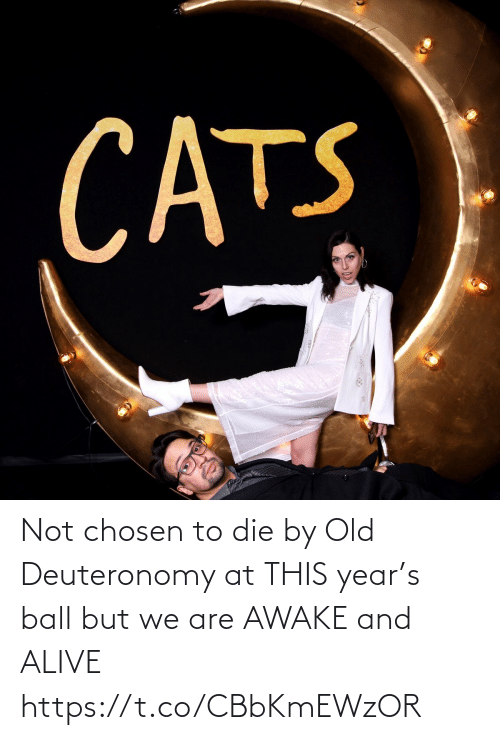 But We: CATS Not chosen to die by Old Deuteronomy at THIS year's ball but we are AWAKE and ALIVE https://t.co/CBbKmEWzOR