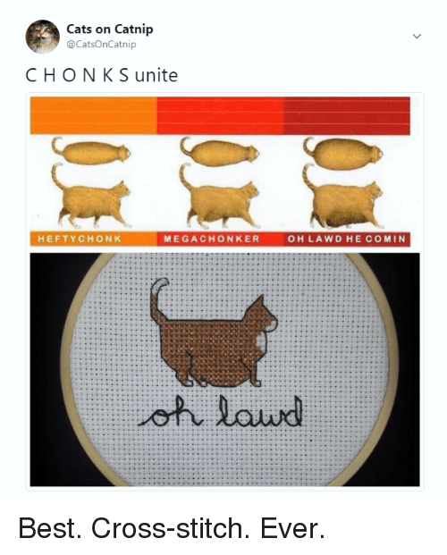 Cats, Memes, and Best: Cats on Catnip  @CatsOnCatnip  CHON K S unite  HEFTYCHONK  MEGACHONKER  OH LAWD HE COMIN Best. Cross-stitch. Ever.