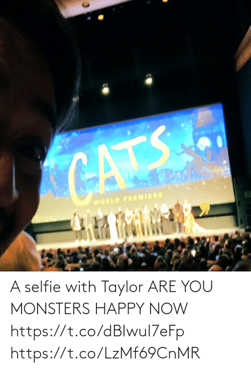selfie: CATS  WORLD PREMIERE A selfie with Taylor ARE YOU MONSTERS HAPPY NOW https://t.co/dBIwuI7eFp https://t.co/LzMf69CnMR