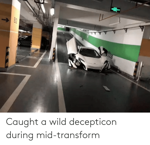 Wild: Caught a wild decepticon during mid-transform