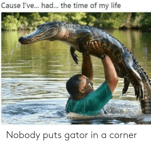 Time Of My Life: Cause I've.. had... the time of my life Nobody puts gator in a corner