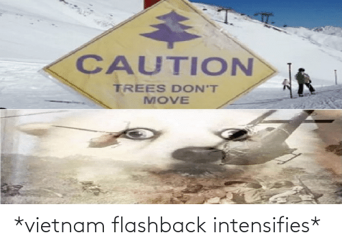 Intensifies: CAUTION  TREES DON'T  MOVE *vietnam flashback intensifies*