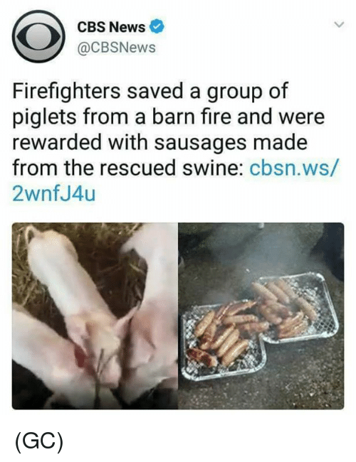 Fire, Memes, and News: CBS News  @CBSNews  Firefighters saved a group of  piglets from a barn fire and were  rewarded with sausages made  from the rescued swine: cbsn.ws/  2wnfJ4u (GC)