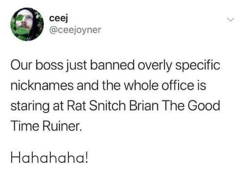 Snitch, Good, and Office: ceej  @ceejoyner  Our boss just banned overly specific  nicknames and the whole office is  staring at Rat Snitch Brian The Good  Time Ruiner. Hahahaha!