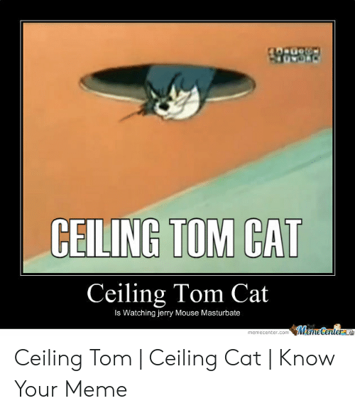 Jerry Mouse: CEILING TOM CAT  Ceiling Tom Cat  Is Watching jerry Mouse Masturbate  MameCenterae  memecenter.com Ceiling Tom | Ceiling Cat | Know Your Meme