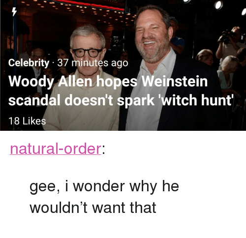 "Woody Allen: Celebrity 37 minutes ago  Woody Allen hopes Weinstein  scandal doesn't spark witch hunt  18 Likes <p><a href=""https://natural-order.tumblr.com/post/166428716086/gee-i-wonder-why-he-wouldnt-want-that"" class=""tumblr_blog"">natural-order</a>:</p>  <blockquote><p>gee, i wonder why he wouldn't want that</p></blockquote>"