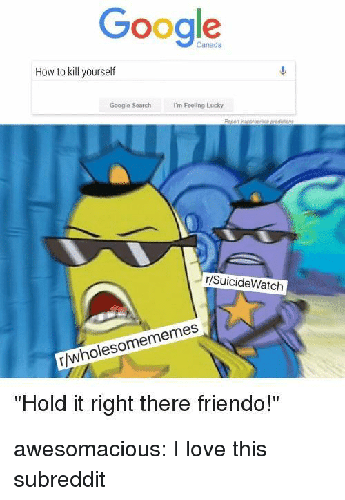 """Friendo: Ceng  Google  Canada  How to kill yourself  Google Search m Foeling Lucky  r/SuicideWatch  r/wholesomememes  """"Hold it right there friendo!"""" awesomacious:  I love this subreddit"""