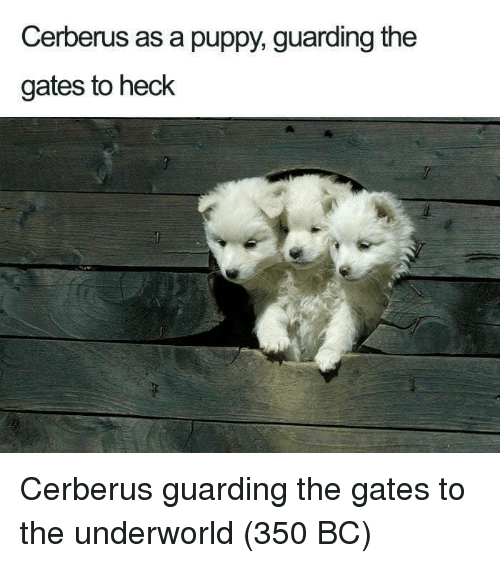 Puppy, Underworld, and The Gates: Cerberus as a puppy, guarding the  gates to heck Cerberus guarding the gates to the underworld (350 BC)
