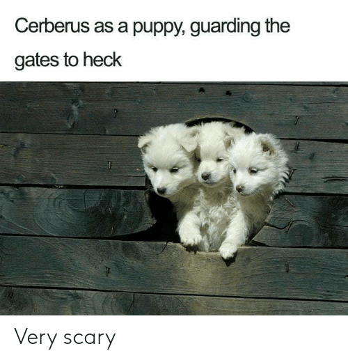 Puppy, The Gates, and Cerberus: Cerberus as a puppy, guarding the  gates to heck Very scary