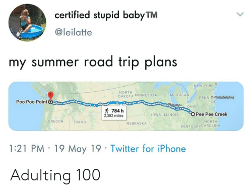 Illinois: certified stupid babyTM  @leilatte  my summer road trip plans  RI  NEW YORK  NORTH  DAKOTA MINNESOTA  MICHIGA  PENN OPhiladelphia  Poo Poo PointC  DE  cago OHIO  784 h  2382 milesOWA ILLINOIS  Pee Pee Creek  OREGON IDAHO  NORTH  NEBRASKA  KENTUCKYCAROLINA  1:21 PM 19 May 19 Twitter for iPhone Adulting 100