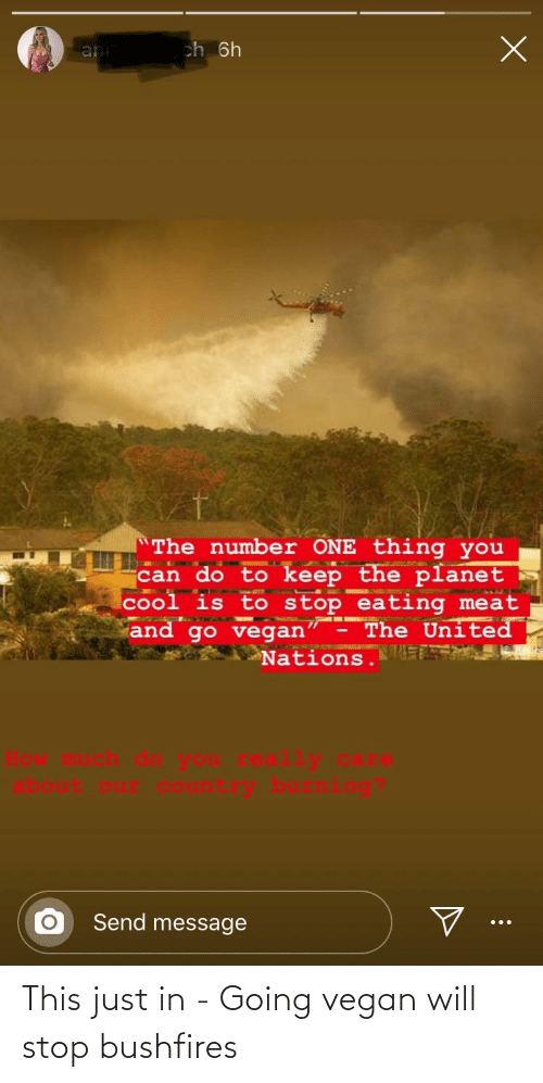 """Vegan, Cool, and United: ch 6h  ani  The number ONE thing you  can do to keep the planet  cool is to stop eating meat  and go vegan"""" - The United  Nations. E  Send message This just in - Going vegan will stop bushfires"""