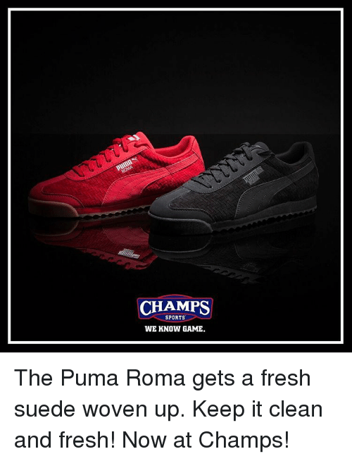 premium selection b06df 8bdb8 Fresh, Memes, and Puma  CHAMPS SPORTS WE KNOW GAME. The Puma Roma