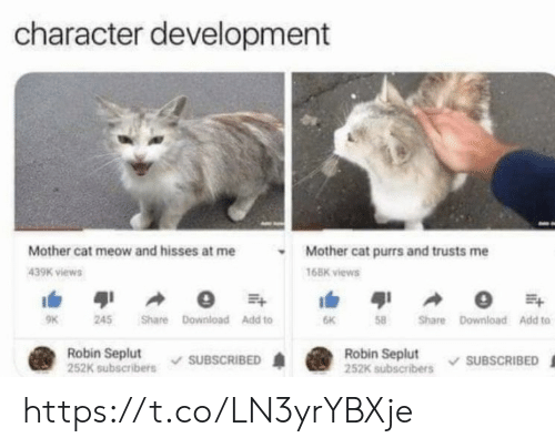 Memes, 🤖, and Cat: character development  Mother cat meow and hisses at me  Mother cat purrs and trusts me  439K views  168K views  41  245  Share Download Add to  58  Share Download Add to  6K  Robin Seplut  252K subscribers  Robin Seplut  252K subscribers  SUBSCRIBED  SUBSCRIBED https://t.co/LN3yrYBXje