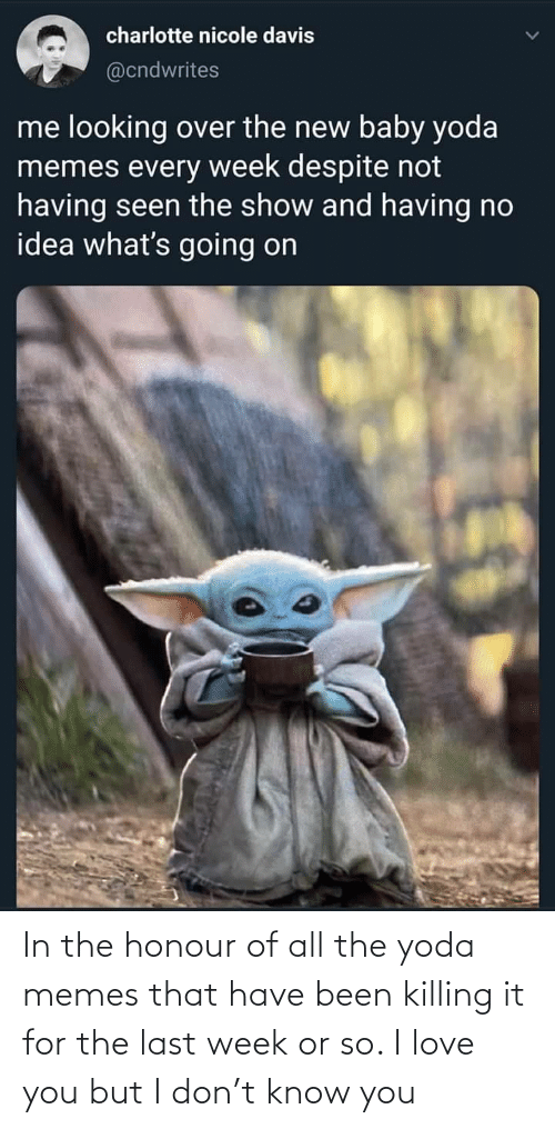Love, Memes, and Yoda: charlotte nicole davis  @cndwrites  me looking over the new baby yoda  memes every week despite not  having seen the show and having no  idea what's going on In the honour of all the yoda memes that have been killing it for the last week or so. I love you but I don't know you