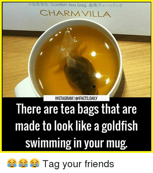 tea bagging: CHARM VILLA  INSTAGRAMI@IFACTS DAILY  There are tea bags that are  made to look like a goldfish  swimming in your mug 😂😂😂 Tag your friends