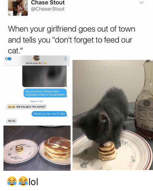 "madding: Chase Stout  @ChaserStout  When your girlfriend goes out of town  and tells you ""don't forget to feed our  cat.""  く四  Kenzie Jones ψ  Do you know if Wilson likes  chocolate chips in his pancakes  Today 9:01AM  did you give him some?  Would you be mad if I did  No lol  ,鄉 😂😂lol"