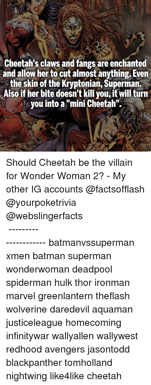 """miny: Cheetah's claws and fangs are enchanted  and allow her to cut almost anything. Even  the skin of the Kryptonian, Superman.  Also if her bite doesn't kill you, it will turn  you into a """"mini Cheetah"""" Should Cheetah be the villain for Wonder Woman 2? - My other IG accounts @factsofflash @yourpoketrivia @webslingerfacts ⠀⠀⠀⠀⠀⠀⠀⠀⠀⠀⠀⠀⠀⠀⠀⠀⠀⠀⠀⠀⠀⠀⠀⠀⠀⠀⠀⠀⠀⠀⠀⠀⠀⠀⠀⠀ ⠀⠀--------------------- batmanvssuperman xmen batman superman wonderwoman deadpool spiderman hulk thor ironman marvel greenlantern theflash wolverine daredevil aquaman justiceleague homecoming infinitywar wallyallen wallywest redhood avengers jasontodd blackpanther tomholland nightwing like4like cheetah"""