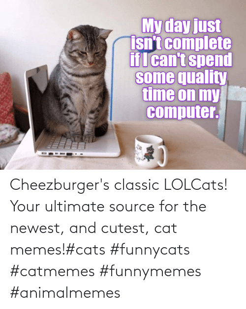 Cats: Cheezburger's classic LOLCats! Your ultimate source for the newest, and cutest, cat memes!#cats #funnycats #catmemes #funnymemes #animalmemes