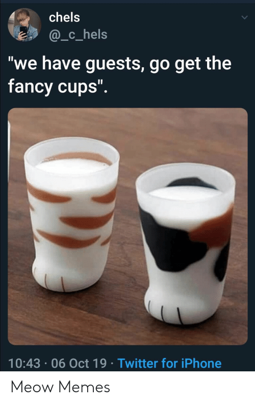 "Fancy: chels  @_c_hels  ""we have guests, go get the  fancy cups"".  10:43 06 Oct 19 Twitter for iPhone Meow Memes"