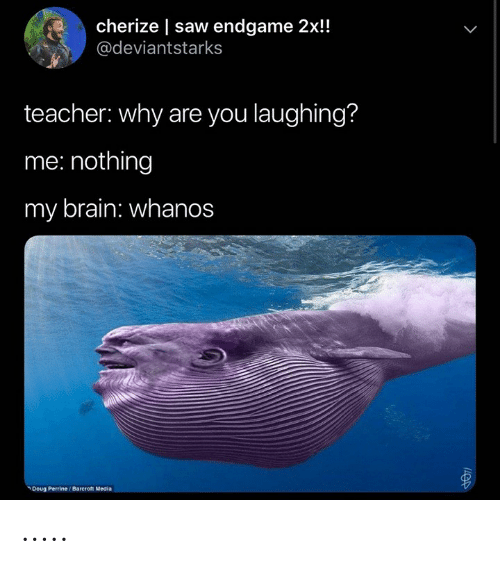 Doug, Saw, and Teacher: cherize | saw endgame 2x!!  @deviantstarks  teacher: why are you laughing?  me: nothing  my brain: whanos  Doug Perrine/Bareroft Media .....