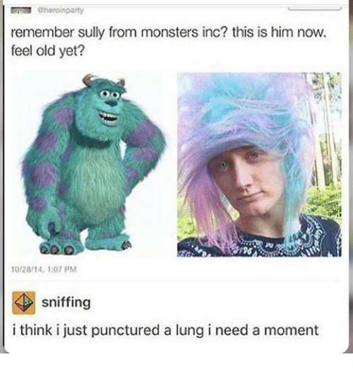 monster inc: cheroinparty  remember sully from monsters inc? this is him now.  feel old yet?  10/28/14, 1:07 PM  sniffing  i think i just punctured a lung i need a moment