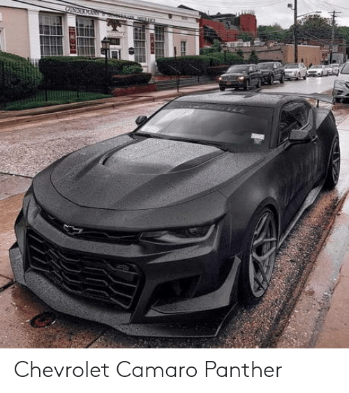 Camaro, Chevrolet, and Panther: Chevrolet Camaro Panther