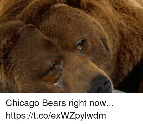 Chicago Bears: Chicago Bears right now... https://t.co/exWZpylwdm
