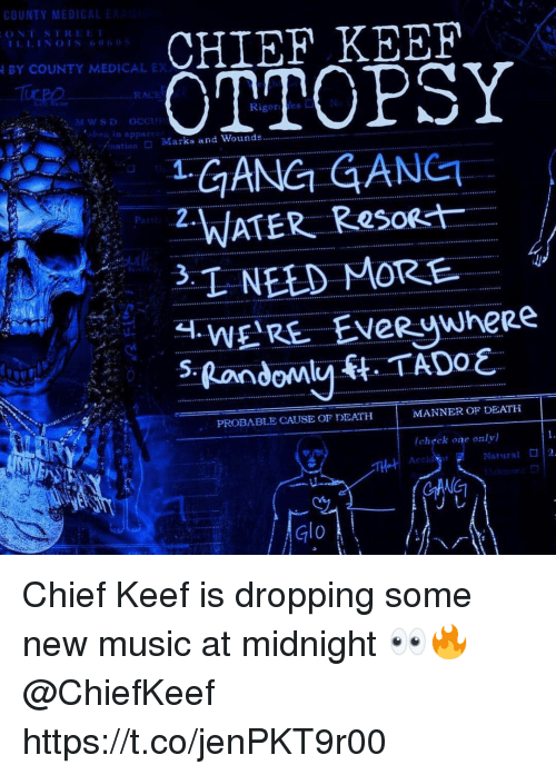 probable: CHIEF KEEF  OTTOPSY  GANG GANET  BY COUNTY MEDICAL EX  RACI  Rigores  /nation  □ Marks and Wounds  P2.  oat  PROBABLE CAUSE Or DEATH  MANNER OF DEATH  (chぐck one only)  Natural  2  TH  Glo Chief Keef is dropping some new music at midnight 👀🔥 @ChiefKeef https://t.co/jenPKT9r00