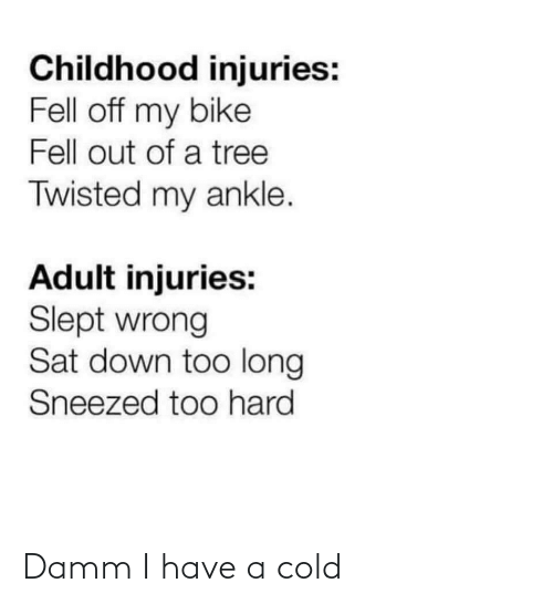 Bike: Childhood injuries:  Fell off my bike  Fell out of a tree  Twisted my ankle.  Adult injuries:  Slept wrong  Sat down too long  Sneezed too hard Damm I have a cold