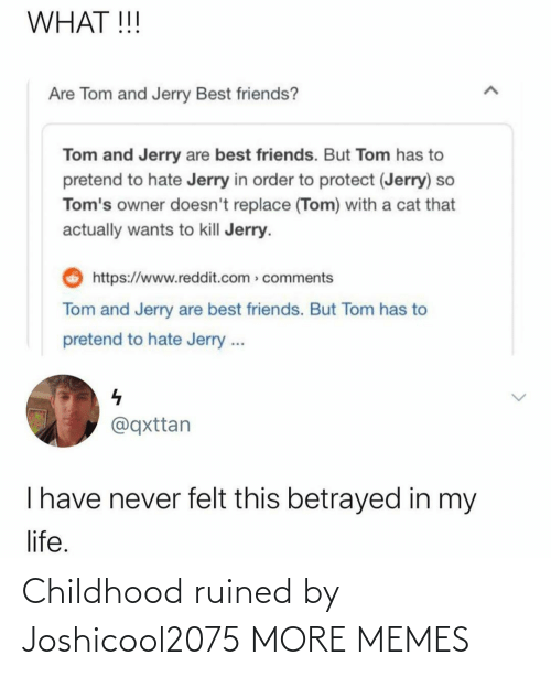 Childhood: Childhood ruined by Joshicool2075 MORE MEMES