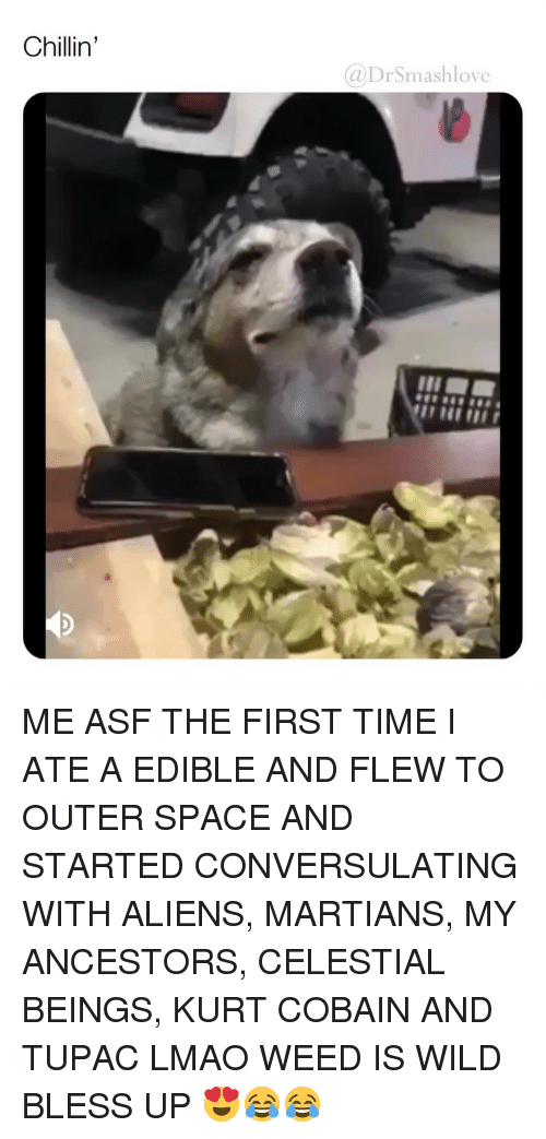 Bless Up, Lmao, and Memes: Chillin'  @DrSmashlove ME ASF THE FIRST TIME I ATE A EDIBLE AND FLEW TO OUTER SPACE AND STARTED CONVERSULATING WITH ALIENS, MARTIANS, MY ANCESTORS, CELESTIAL BEINGS, KURT COBAIN AND TUPAC LMAO WEED IS WILD BLESS UP 😍😂😂