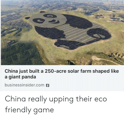 giant panda: China just built a 250-acre solar farm shaped like  a giant panda  businessinsider.com China really upping their eco friendly game
