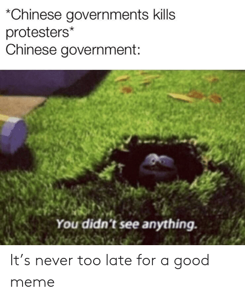 Meme, Chinese, and Good: *Chinese governments kills  protesters*  Chinese government:  You didn't see anything. It's never too late for a good meme