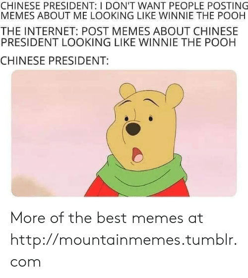 Memes About: CHINESE PRESIDENT: I DON'T WANT PEOPLE POSTING  MEMES ABOUT ME LOOKING LIKE WINNIE THE POOH  THE INTERNET: POST MEMES ABOUT CHINESE  PRESIDENT LOOKING LIKE WINNIE THE POOH  CHINESE PRESIDENT: More of the best memes at http://mountainmemes.tumblr.com
