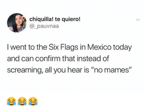 """Memes, Mexico, and Six Flags: chiquilla! te quiero!  @_pauvnaa  I went to the Six Flags in Mexico today  and can confirm that instead of  screaming, all you hear is """"no mames"""" 😂😂😂"""