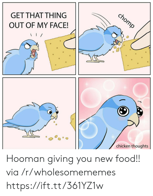Hooman: chomp  GET THAT THING  OUT OF MY FACE!  chicken thoughts Hooman giving you new food!! via /r/wholesomememes https://ift.tt/361YZ1w