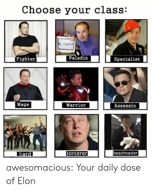 Your Daily Dose: Choose your class:  Fighter  Paladin  Specialist  Mage  Warrior  Assassin  Elon  beastmaster  bardl  orcerer awesomacious:  Your daily dose of Elon
