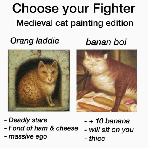 Orang: Choose your Fighter  Medieval cat painting edition  Orang laddie  banan boi  Deadly stare  - Fond of ham & cheese  - massive ego  - 10 banana  - will sit on you  - thicc