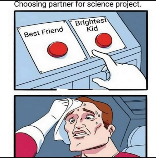 Partner: Choosing partner for science prOject  Brightest  Kid  Best Friend