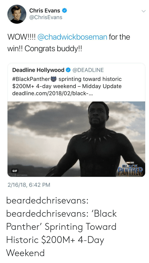 Chris Evans, Gif, and Tumblr: Chris Evans  @ChrisEvans  WOW!!! @chadwickboseman for the  win!! Congrats buddy!!  Deadline Hollywood @DEADLINE  #BlackPanther-sprinting toward historic  $200M+ 4-day weekend - Midday Update  deadline.com/2018/02/black-  GIF  2/16/18, 6:42 PM beardedchrisevans:  beardedchrisevans: 'Black Panther' Sprinting Toward Historic $200M+ 4-Day Weekend