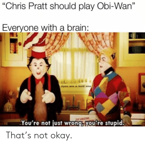 "obi: ""Chris Pratt should play Obi-Wan""  Everyone with a brain:  VIL  @you are a bold one  THE AMA  You're not just wrong, you're stupid. That's not okay."