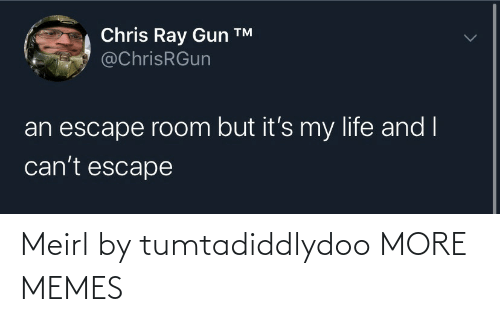 But Its: Chris Ray Gun ™  @ChrisRGun  an escape room but it's my life and I  can't escape Meirl by tumtadiddlydoo MORE MEMES