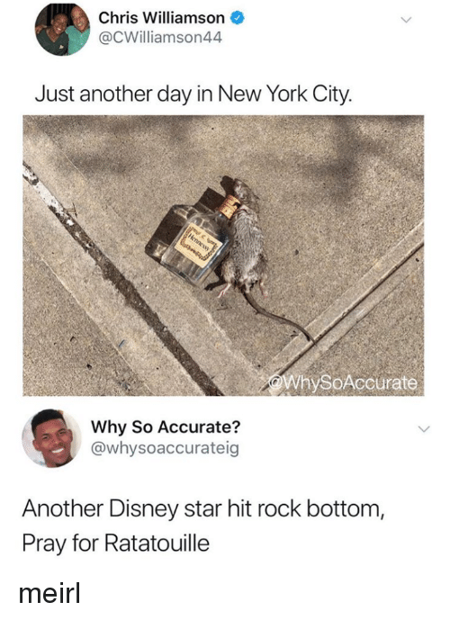 New York City: Chris Williamson  @CWilliamson44  Just another day in New York City.  WhySoAccurate  Why So Accurate?  @whysoaccurateig  Another Disney star hit rock bottom,  Pray for Ratatouille meirl