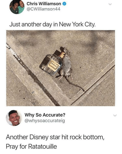 New York City: Chris Williamson  @CWilliamson44  Just another day in New York City  Why So Accurate?  @whysoaccurateig  Another Disney star hit rock bottom,  Pray for Ratatouille
