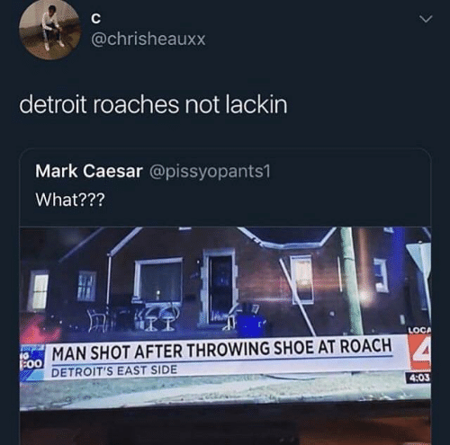 Detroit, Shoe, and Caesar: @chrisheauxx  detroit roaches not lackin  Mark Caesar @pissyopants1  What???  LOCA  MAN SHOT AFTER THROWING SHOE AT ROACH  :00  DETROIT'S EAST SIDE  4:03