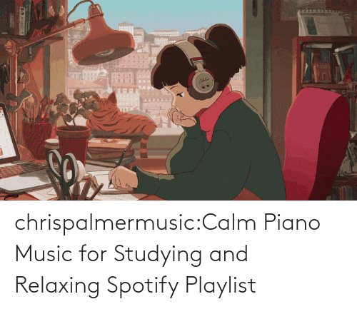 Piano: chrispalmermusic:Calm Piano Music for Studying and Relaxing Spotify Playlist